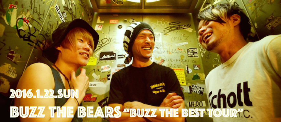buzzthebears